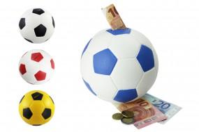 Steck das Geld in deinen Verein! Fußball Spardose in Lederoptik